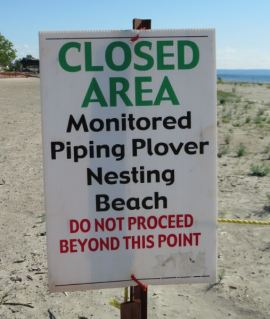 Sign showing beach closed